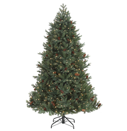ST. Moritz Spruce From From £99